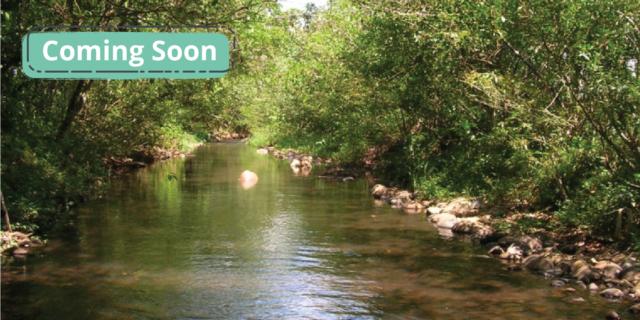 Evaluación de la Huella de Agua, ISO 14.046