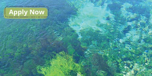 Gobernanza del Agua en América Latina y el Caribe