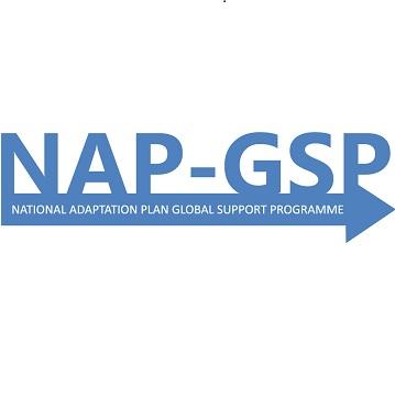 NAP GSP logo